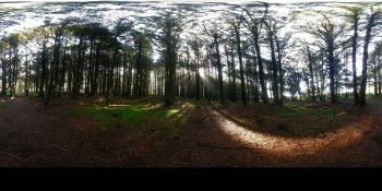 Neptune State Park, Oregon, USA panorama